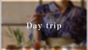 day trip